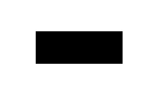 Logo-Schawk.png