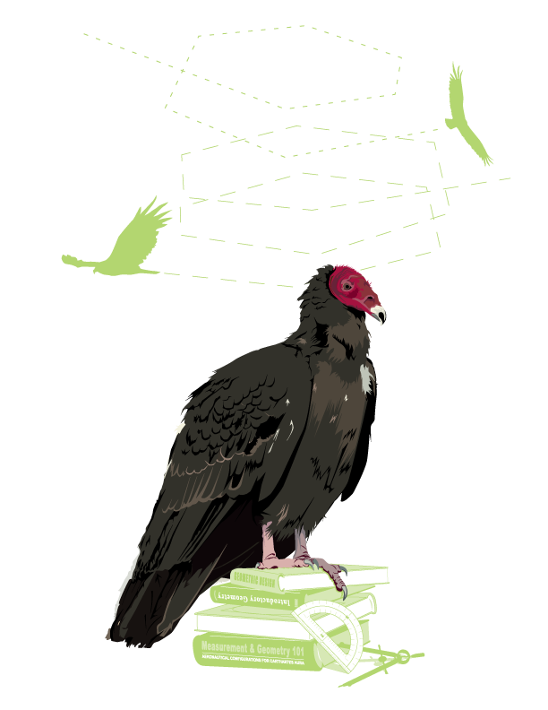 ill_vulture.png