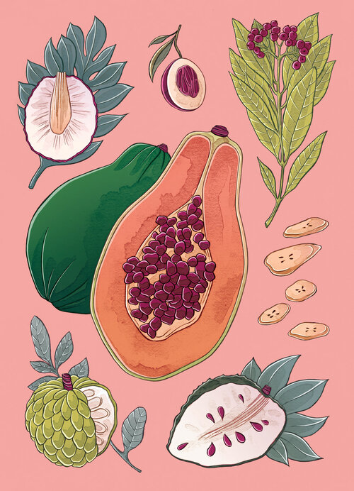 Childhood Fruit and Spices -  Stephanie Singleton