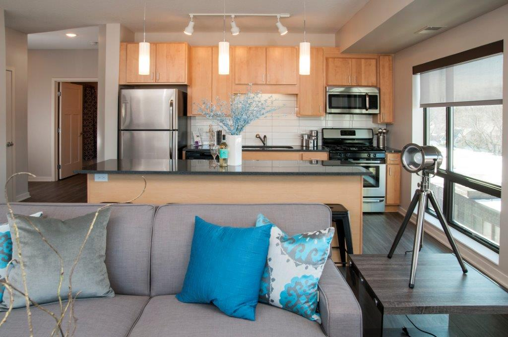Zest Apartments in Tangletown Minneapolis, MN_Zest model_1.jpg