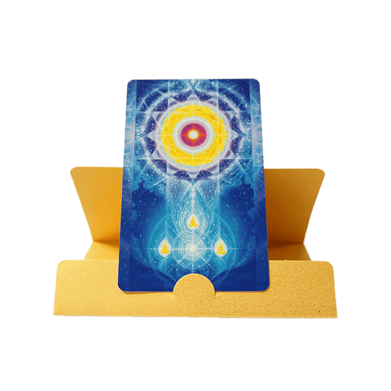 LifeParticle_Card-Case-1.png