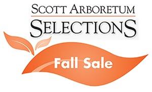 SAS-Fall-Sale-300-by-300.jpg
