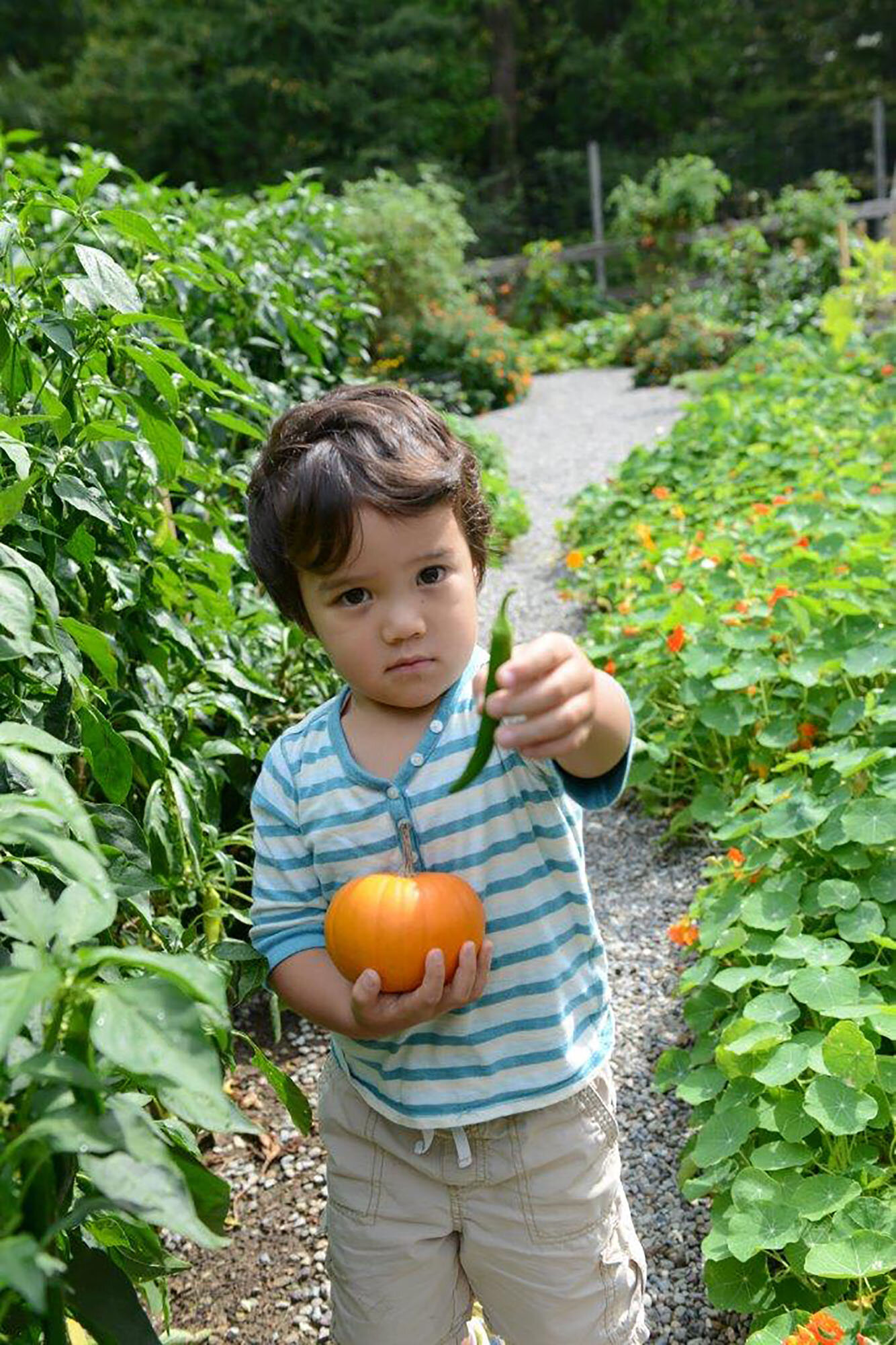 Towa Stevens already got his pumpkin (and a pepper, too) from the Edible Garden. Get yours during Tyler's Pumpkin Days on October 12 and 13. Photo by Tracy Clark.