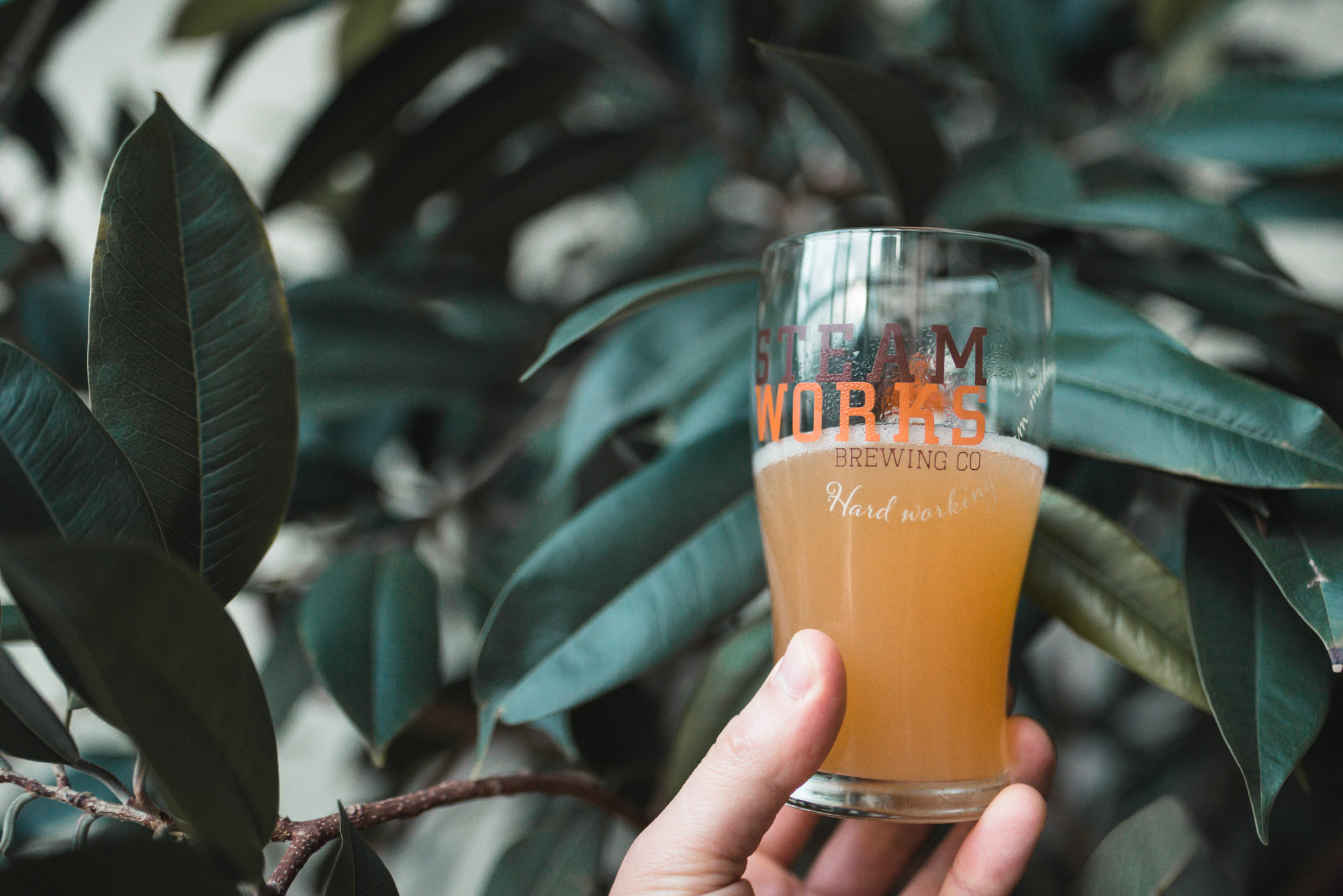 steamworks umeboshi sour beer craft beer vancouver gastown launch party