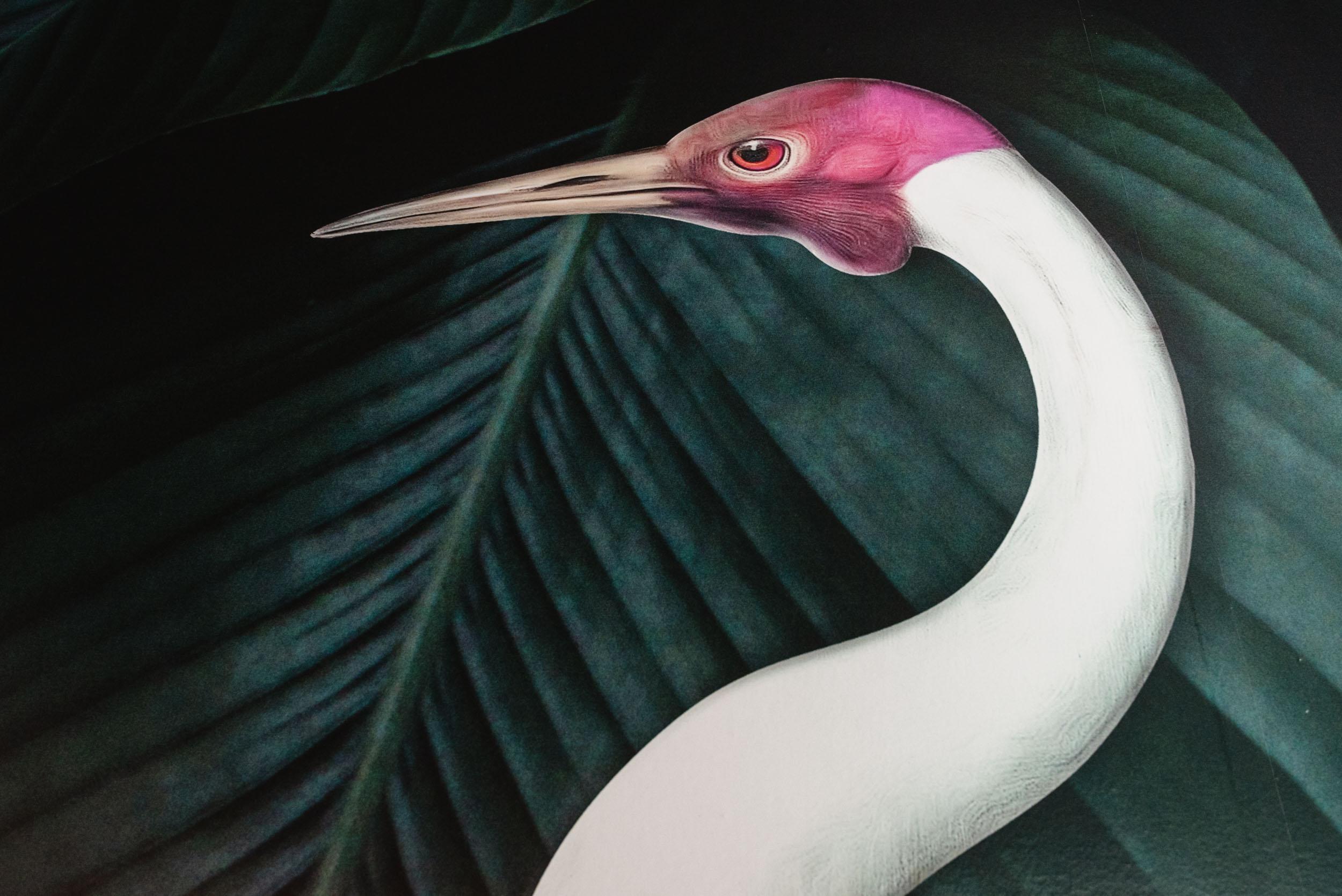 Bird mural wallpaper in bathroom