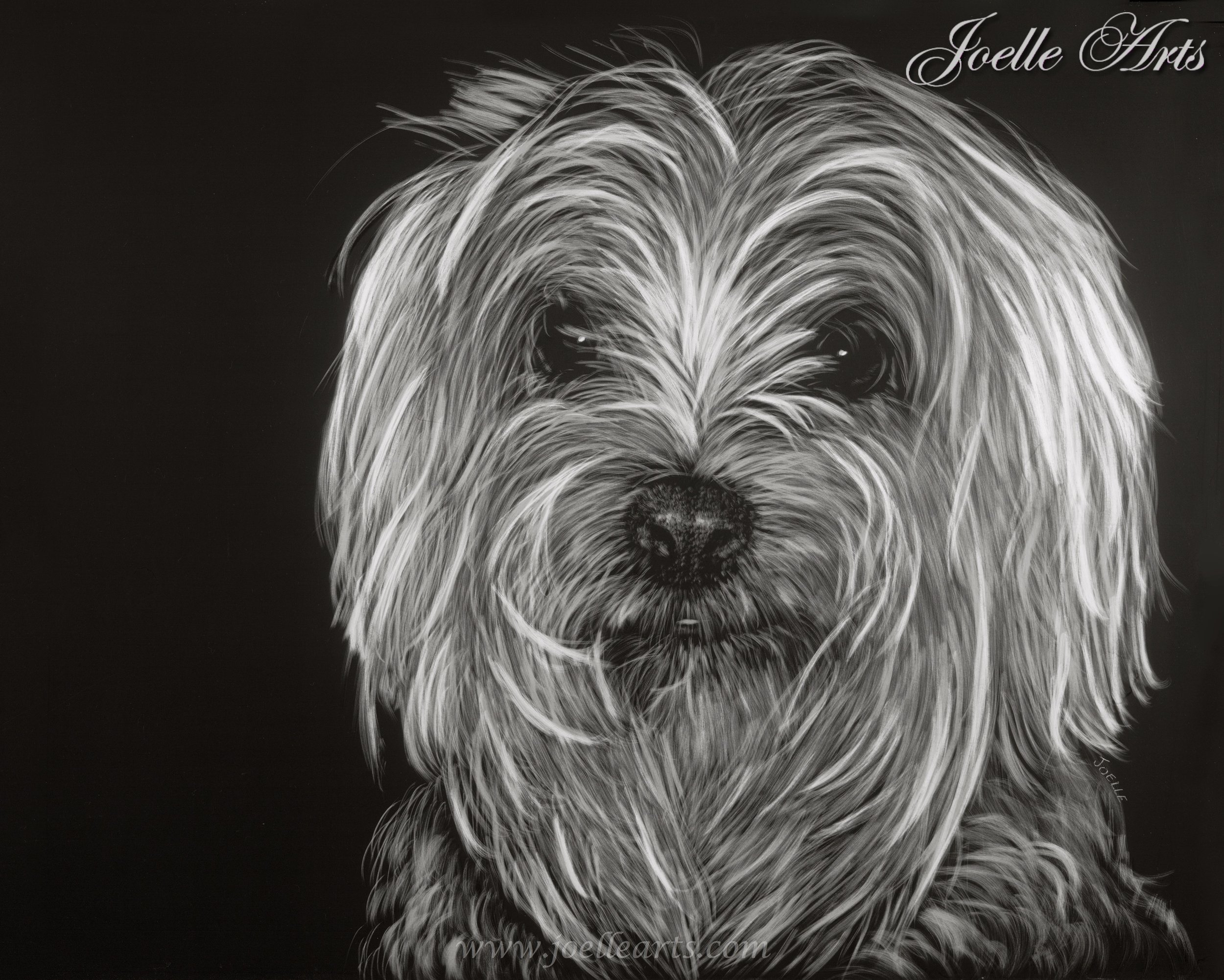 """""""Buster"""" - Year: 2008Size: 11""""x 14"""""""
