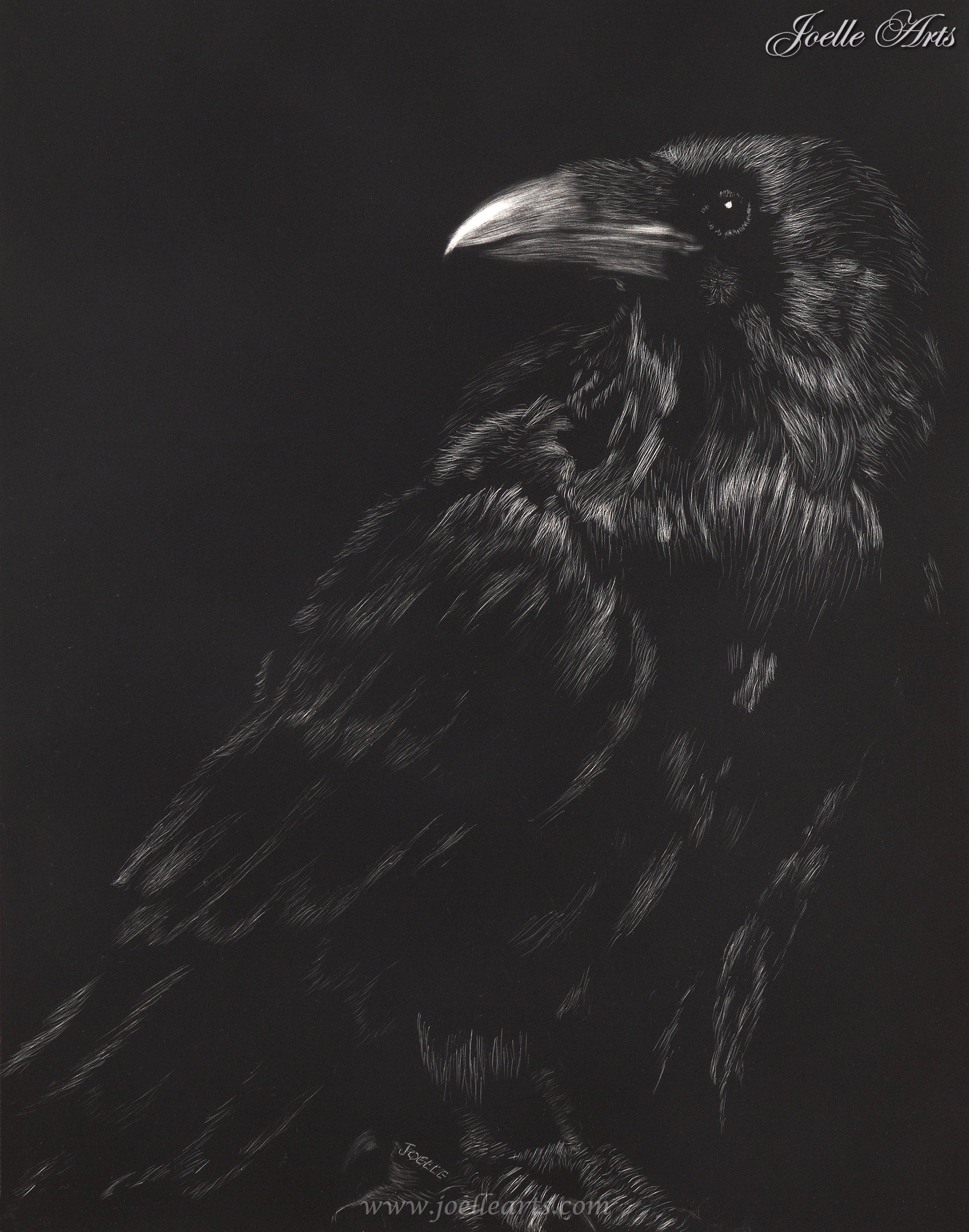 """""""Black Majesty"""" - Year: 2012Size: 11""""x 14"""""""