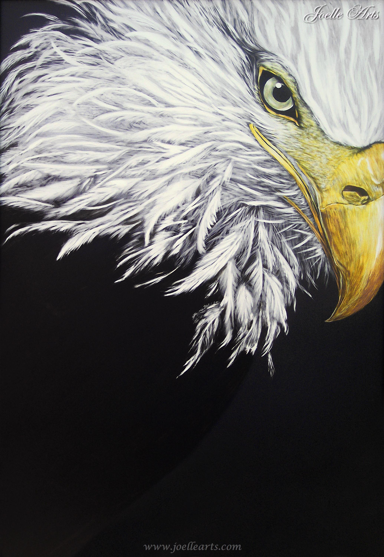 """""""American Pride"""" The Bald Eagle"""
