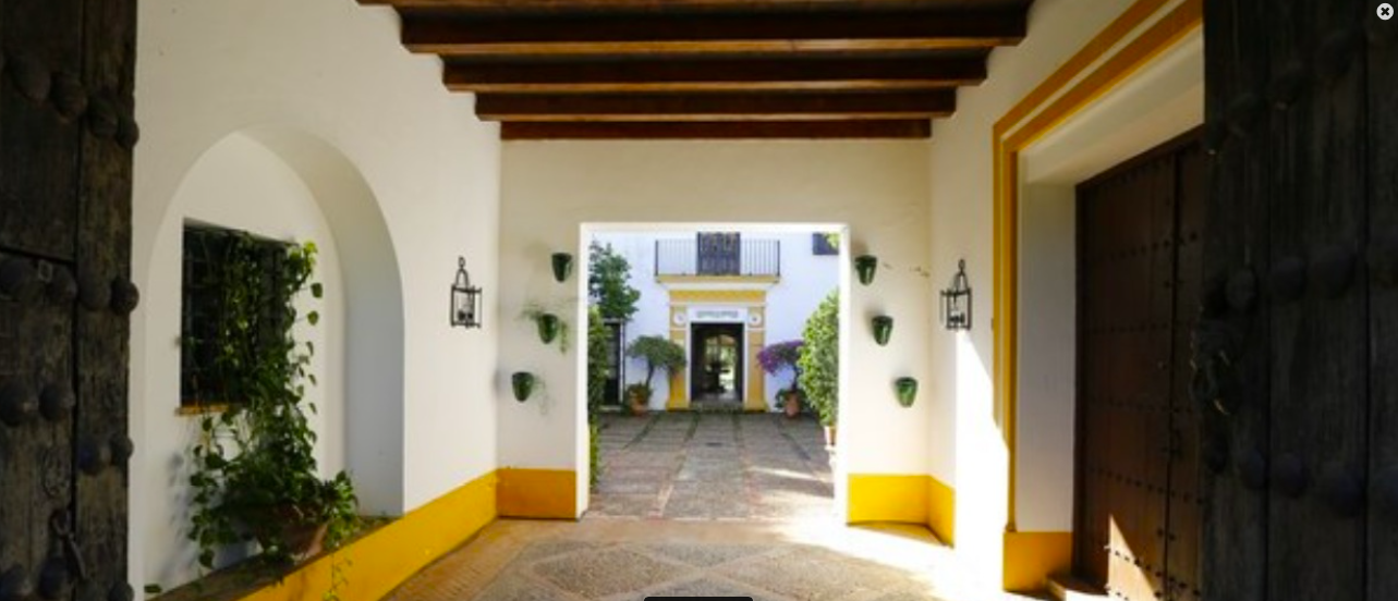 exclusive_timeshare_country_house_hacienca_seville_andalusia_spain.png