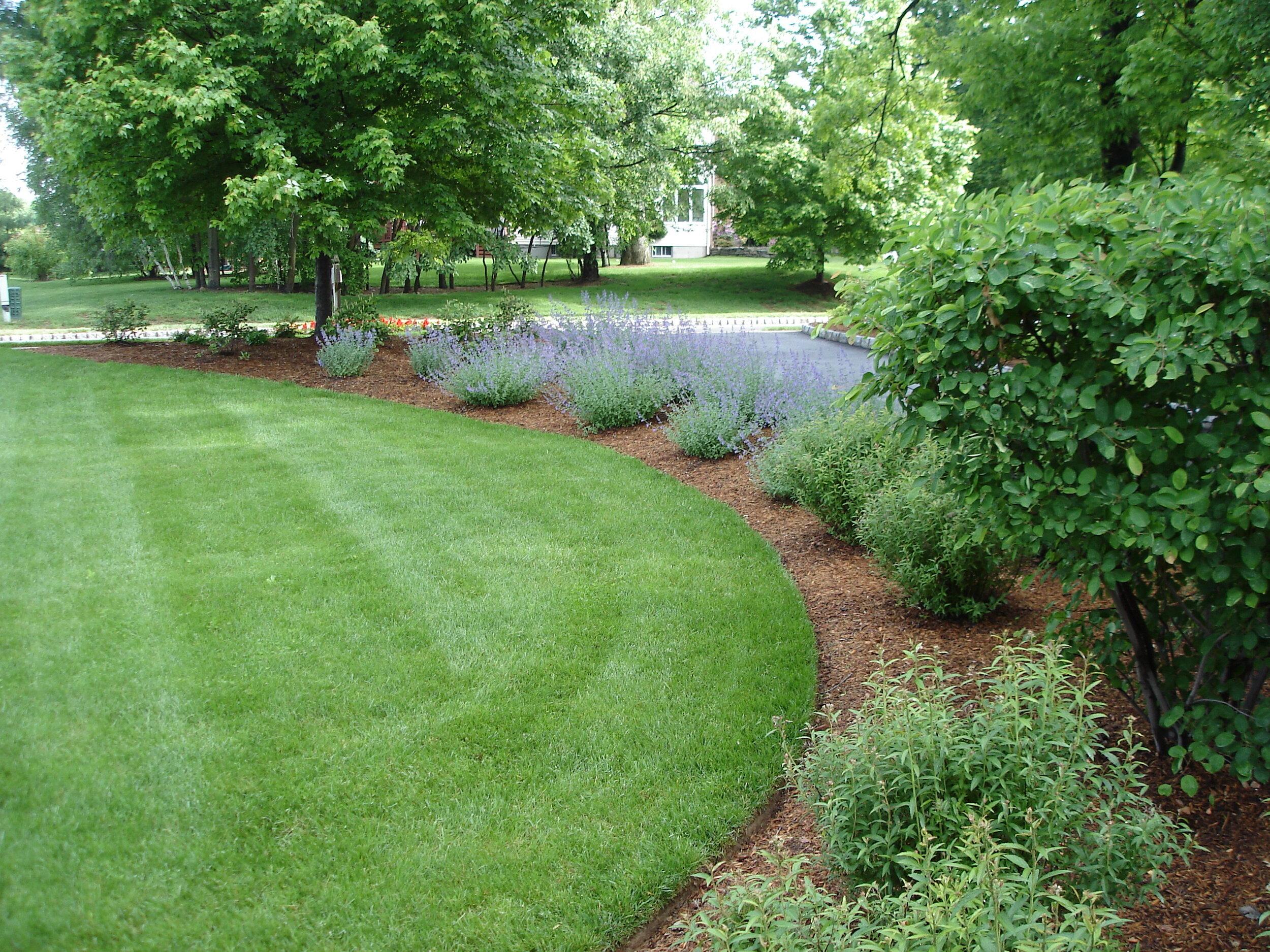 Top quality landscape care in Randolph NJ