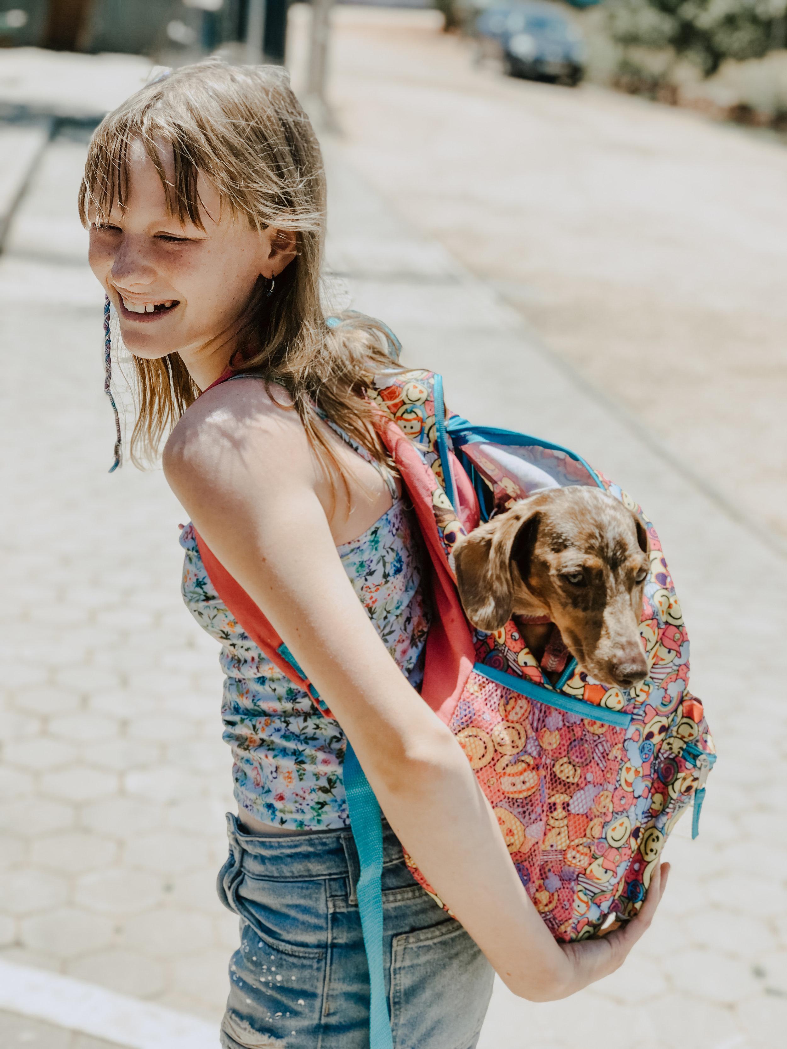 Dog friendly campsites algarve
