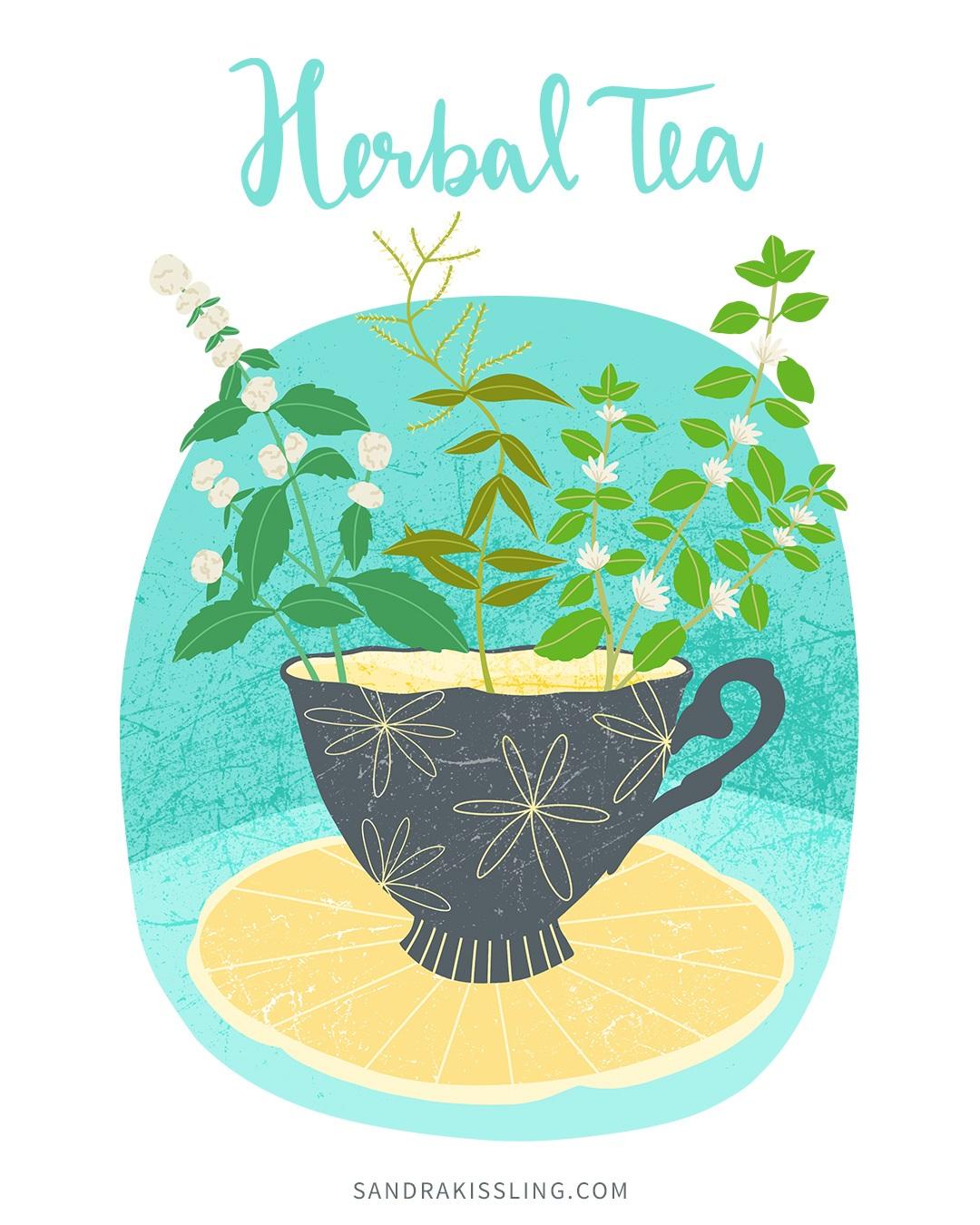 herbal-tea-illustration.jpg