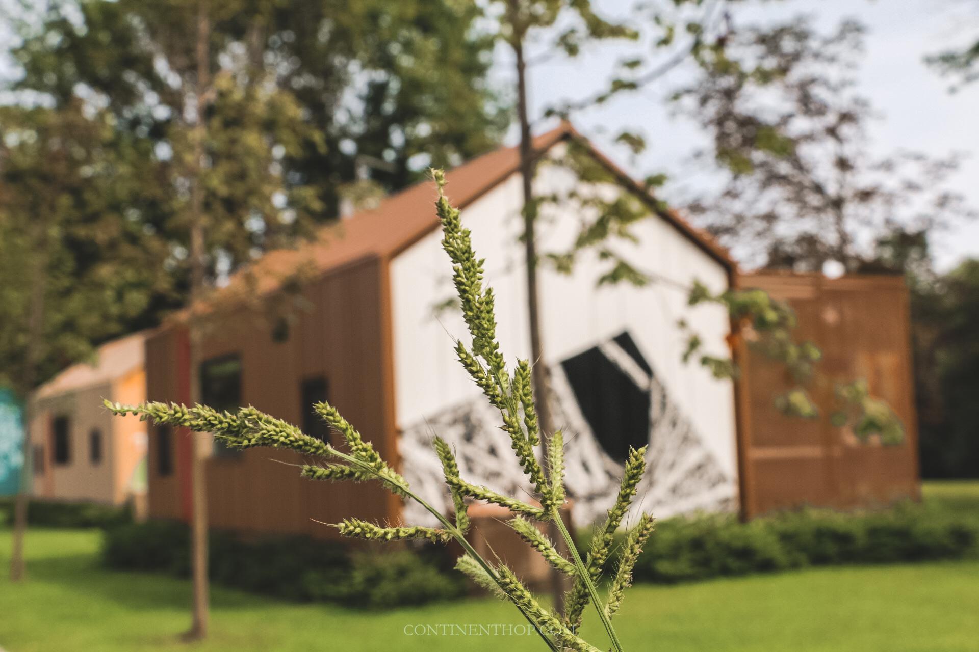 luxury glamping hut at big berry resort in bela krajina slovenia
