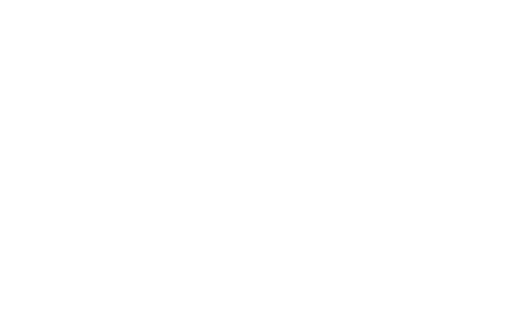 White - OFFICIAL SELECTION - Southern Oasis Film Festival - 2019.png