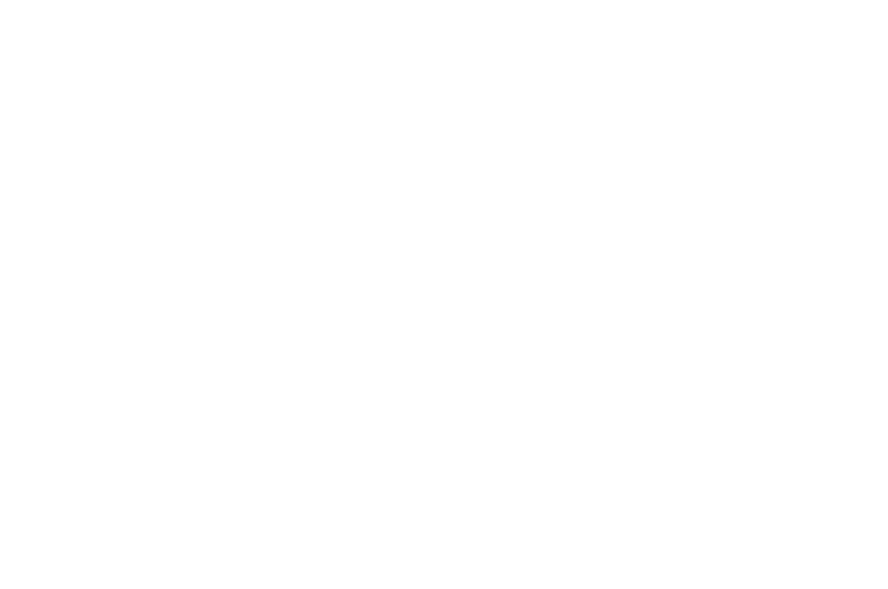 White - Carolina Regional Award Winner - FAM Fest International Film Festival - 2018.png