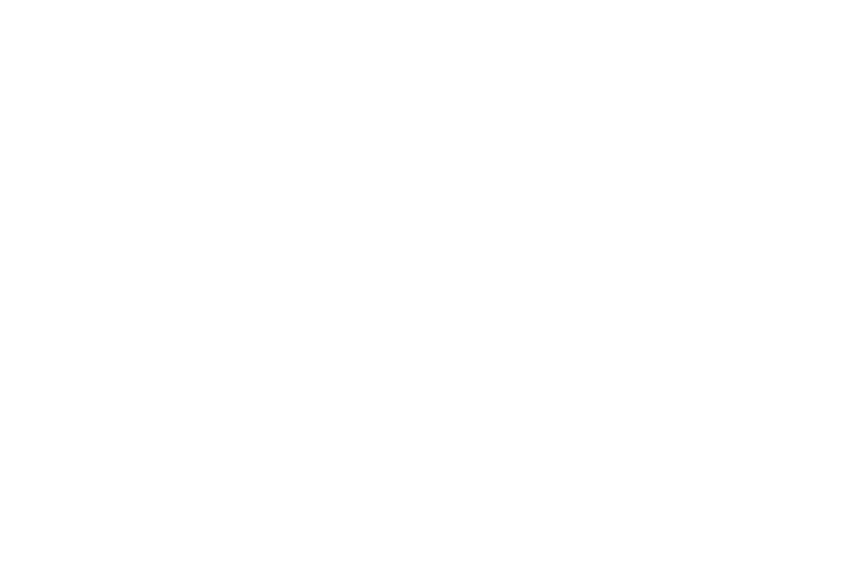 OFFICIAL SELECTION - Direct Monthly Online Film Festival - 2016.png