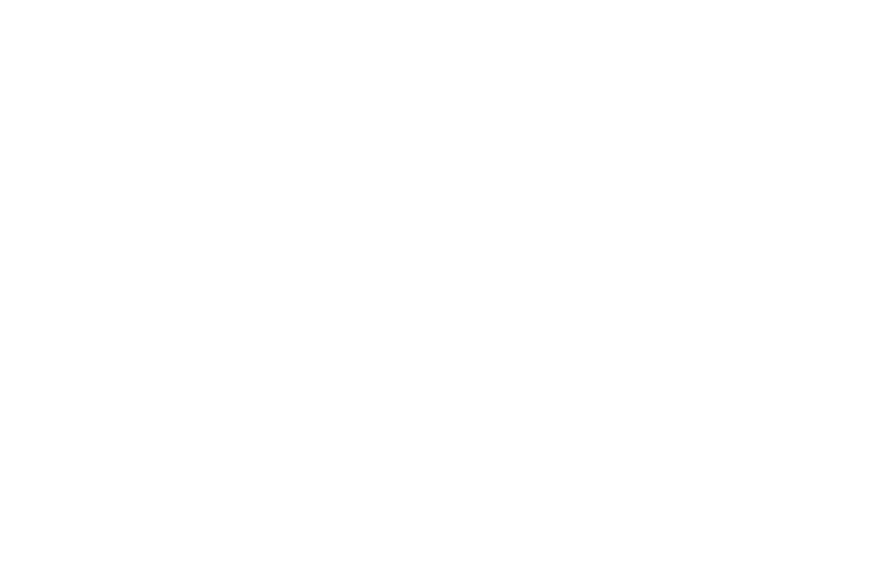 OFFICIAL SELECTION - SHORT to the Point - 2016.png