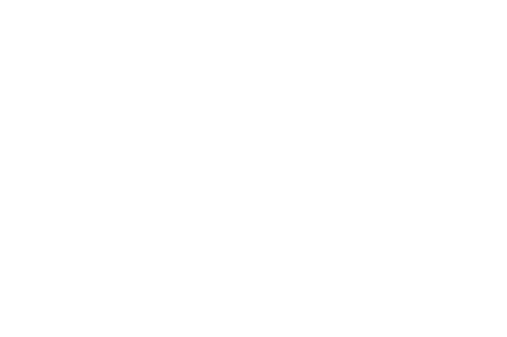 OFFICIAL SELECTION - Miami Independent Film Festival - 2016.png