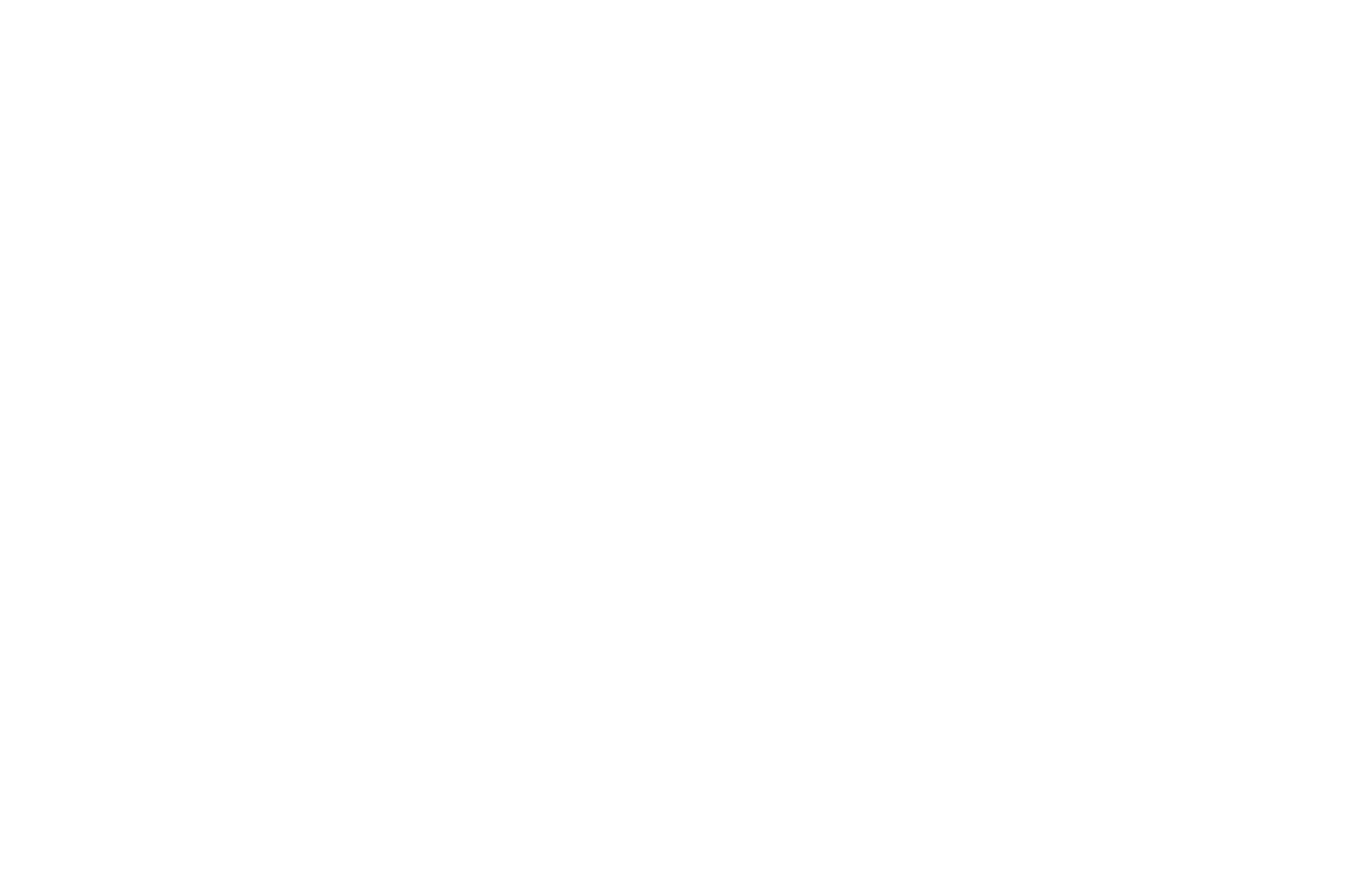 OFFICIAL SELECTION - TMFF - The Monthly Film Festival - 2016.png