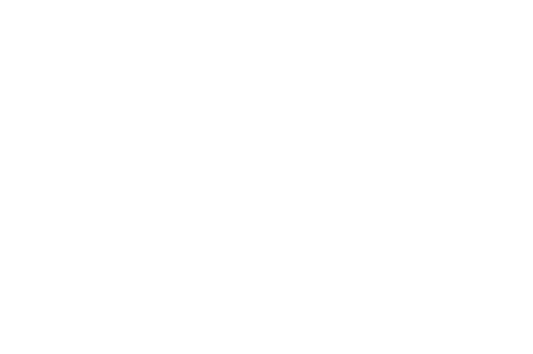 OFFICIAL SELECTION - Horror Bowl Movie Awards - 2019.png
