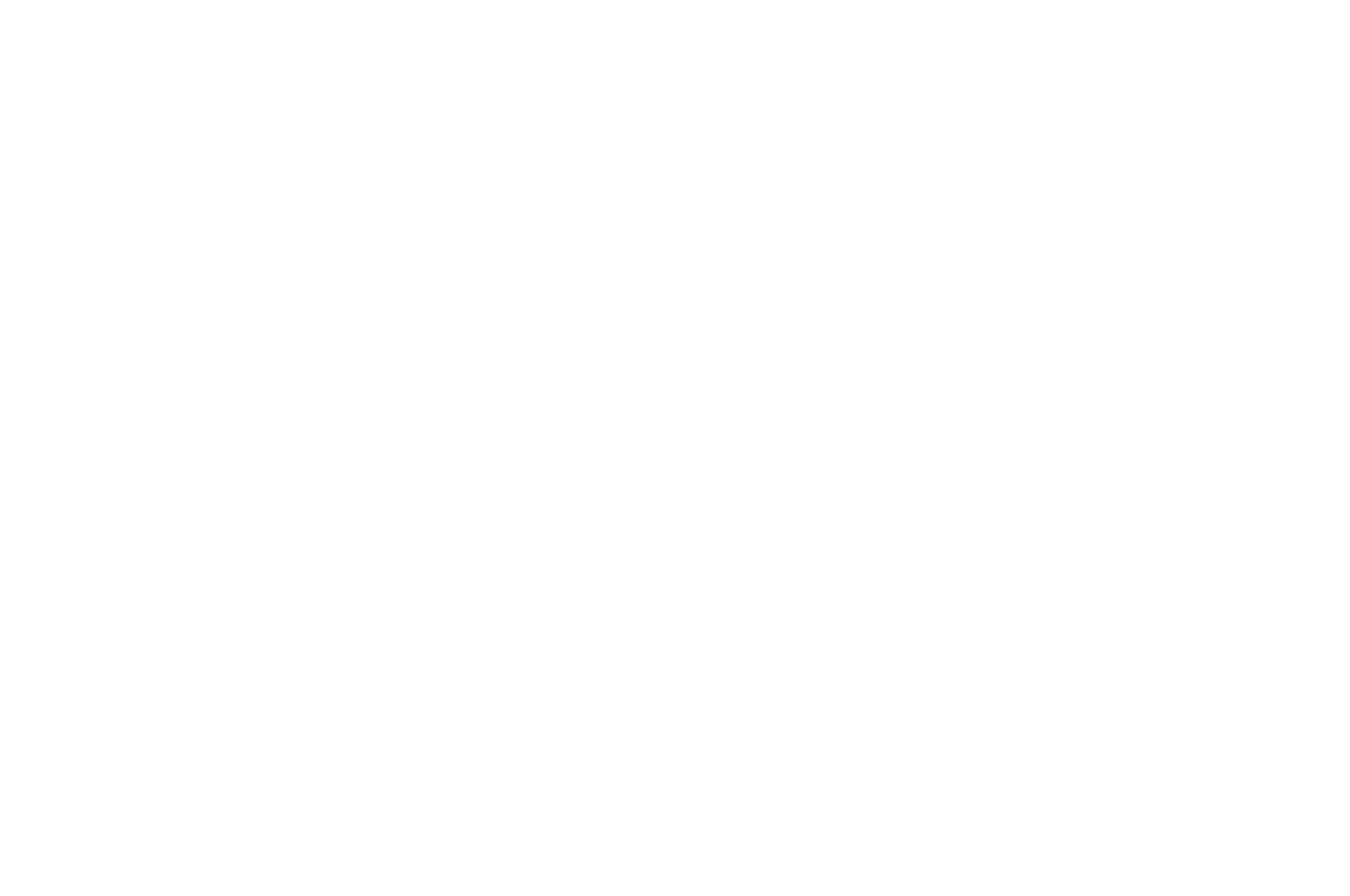 OFFICIAL SELECTION - Reedy Reels - 2019.png