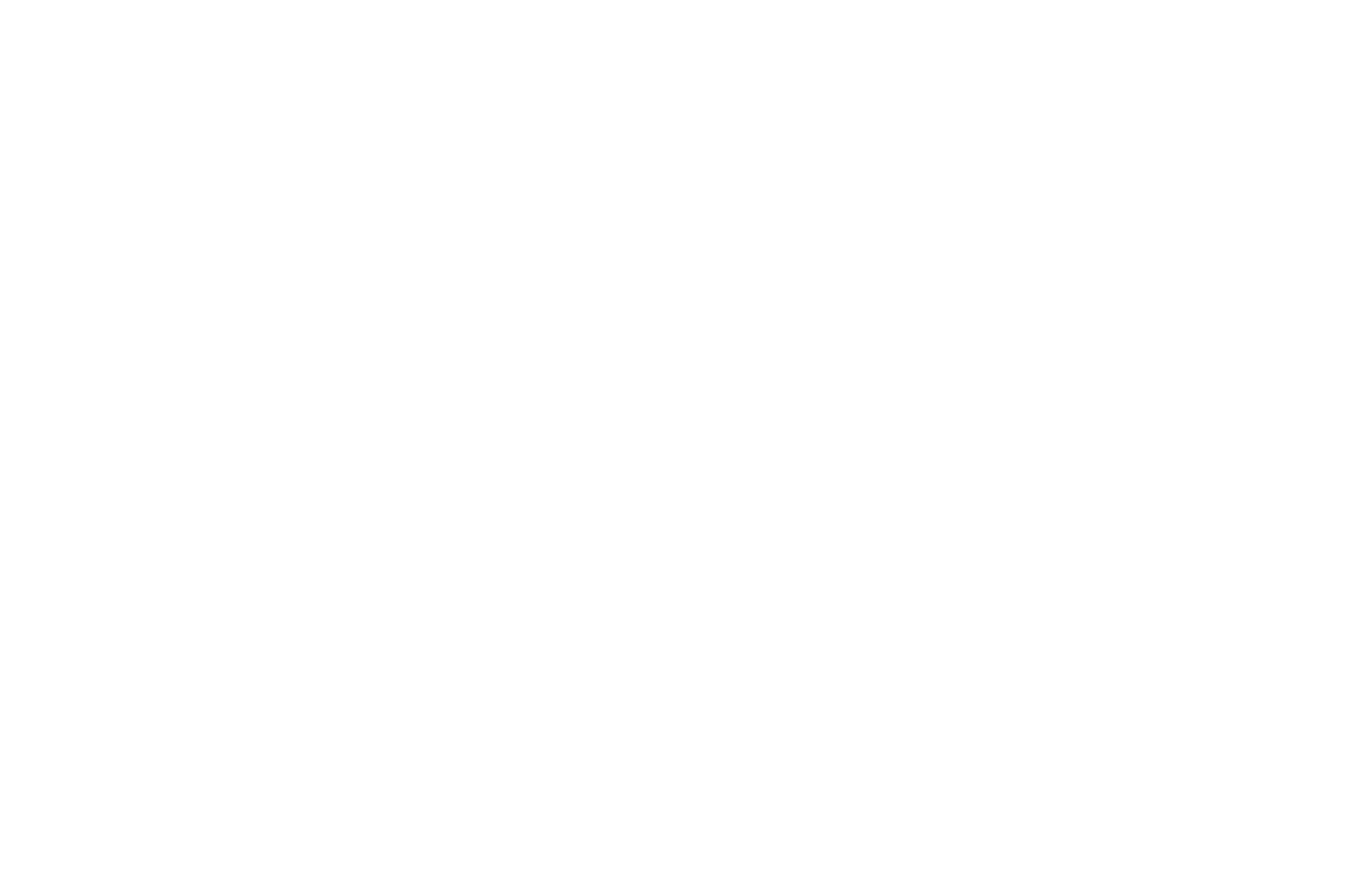 OFFICIAL SELECTION - Tryon International Film Festival - TRYON19 - 2019.png