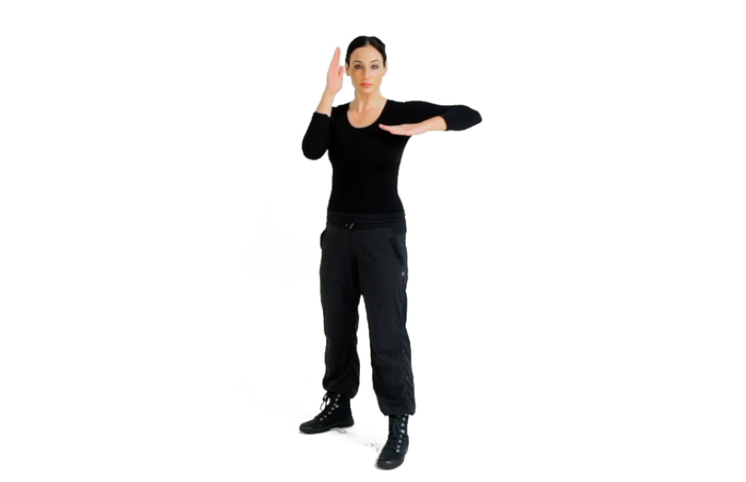 Step 2 (Front) - For the Horizontal Elbow, mold your striking arm into the elbow weapon by raising your upper arm parallel to the ground, blading the hand, placing it against your body/chest area and extending your arm to bring the hand to the outer part of your body.