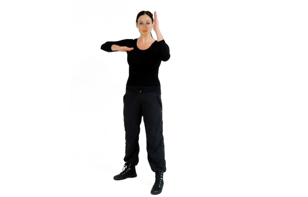 Step 2 (BACK) - For the Horizontal Elbow, mold your striking arm into the elbow weapon by raising your upper arm parallel to the ground, blading the hand, placing it against your body/chest area and extending the arm to bring the hand to the outer part of your body.