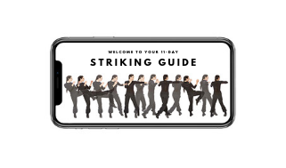 STRIKING GUIDE.png