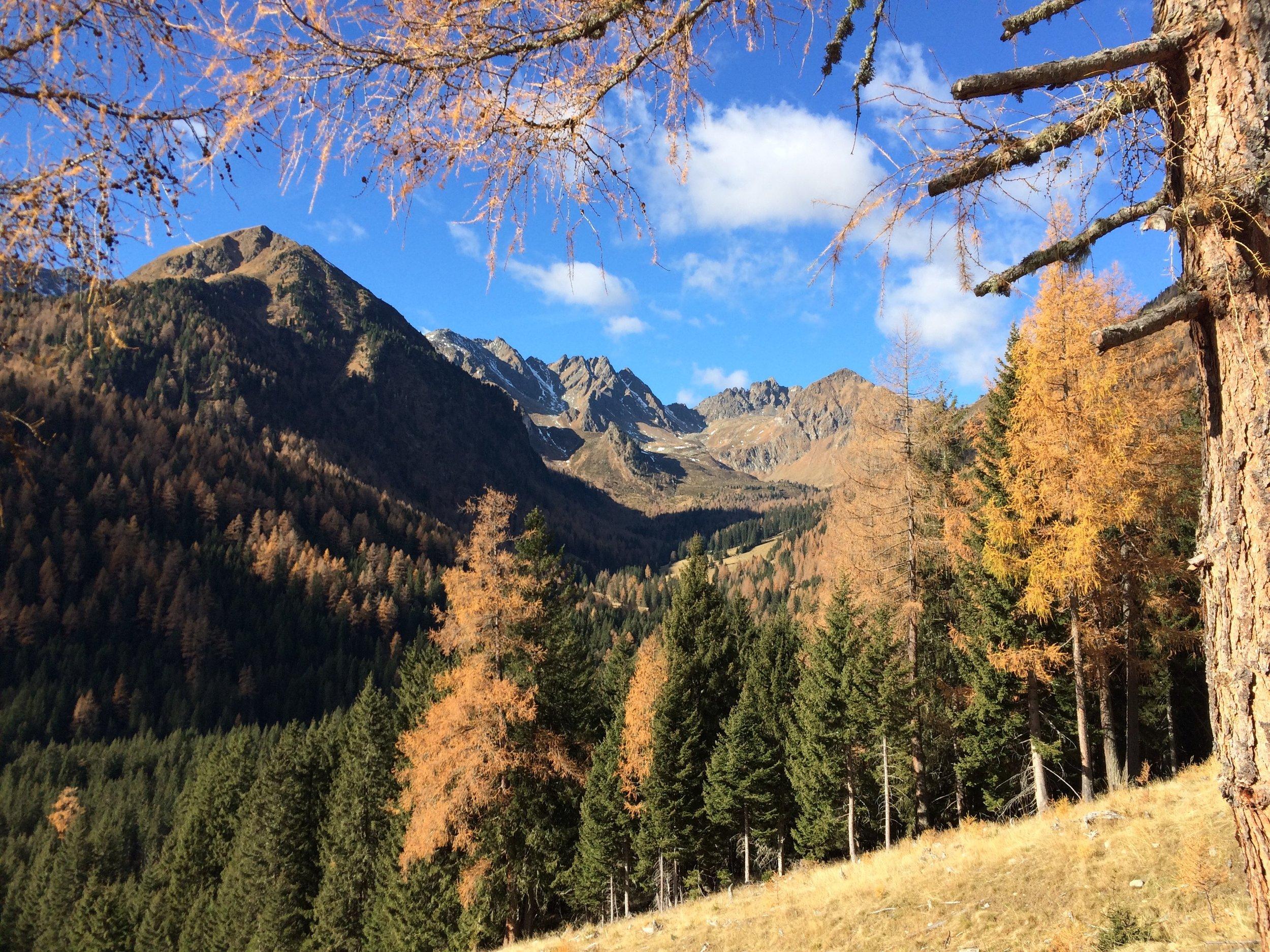 Esee Wandern Schoberhütte 3.jpg