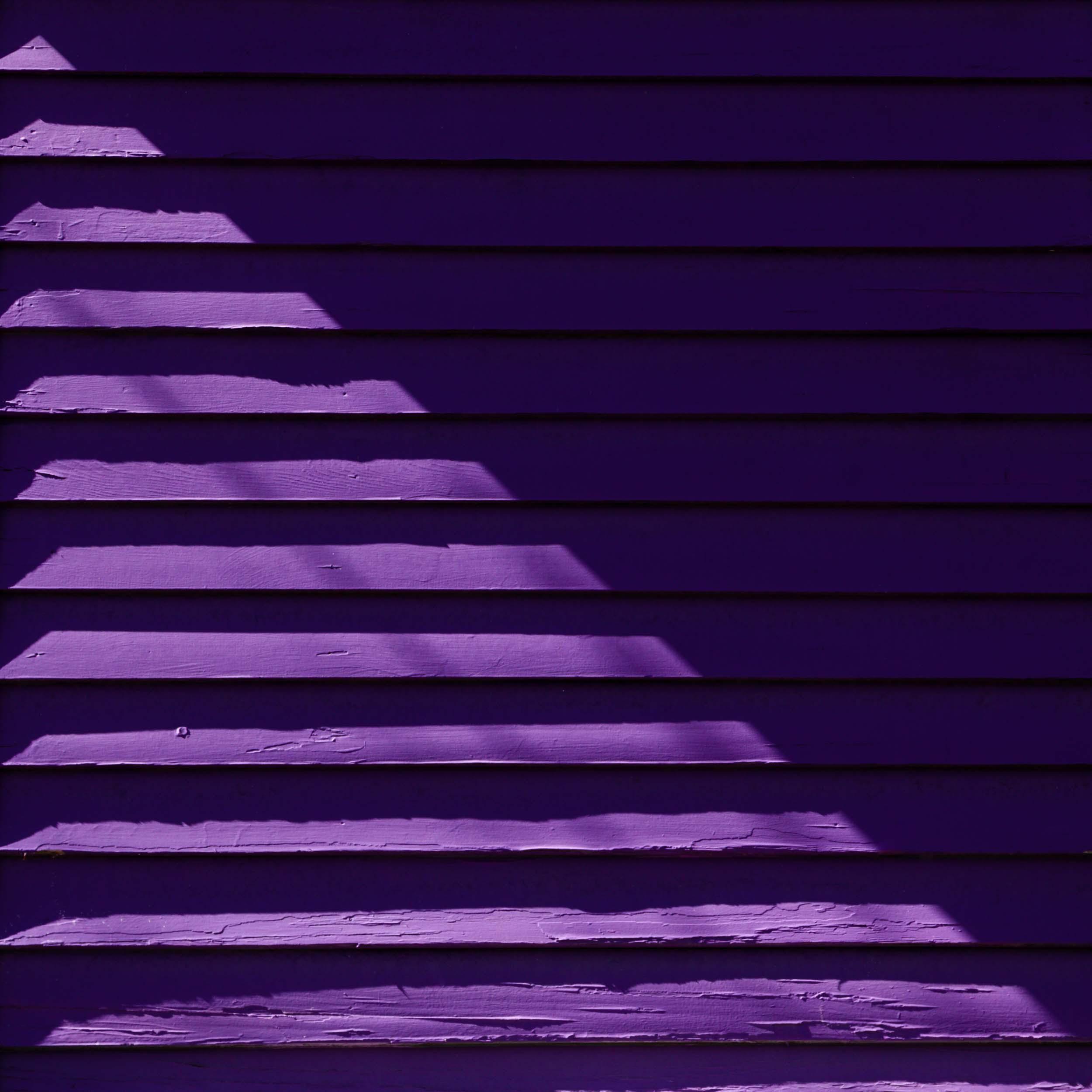 Purple-Quarter-Noon-3.jpg