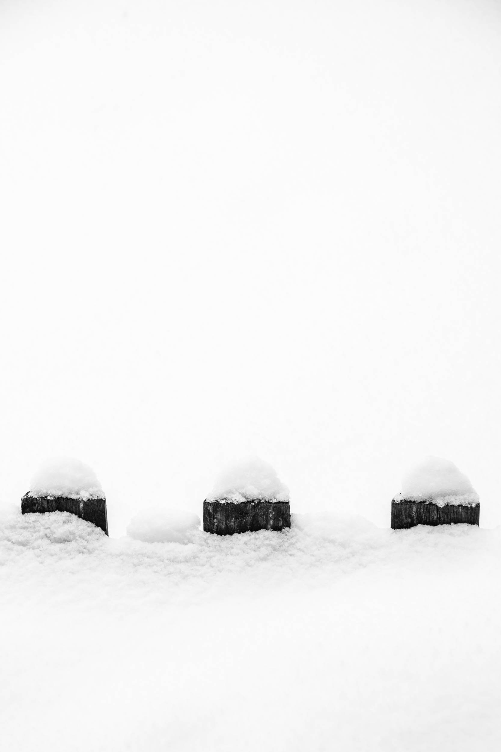 Maine-2009-2.jpg