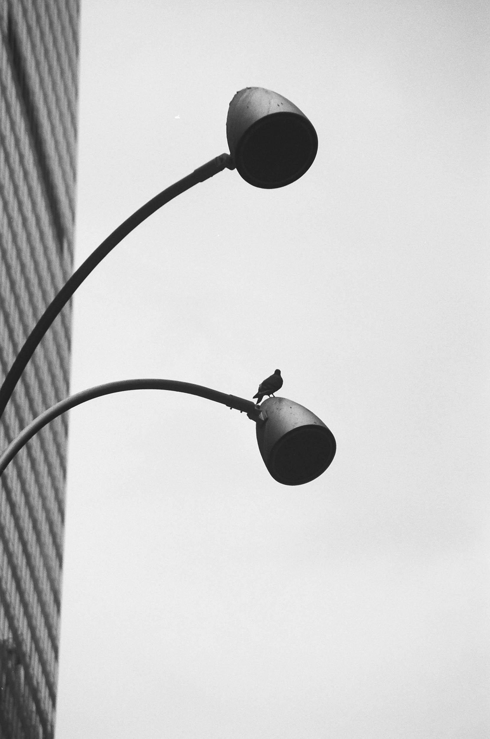NYC-2004-DF-32.jpg
