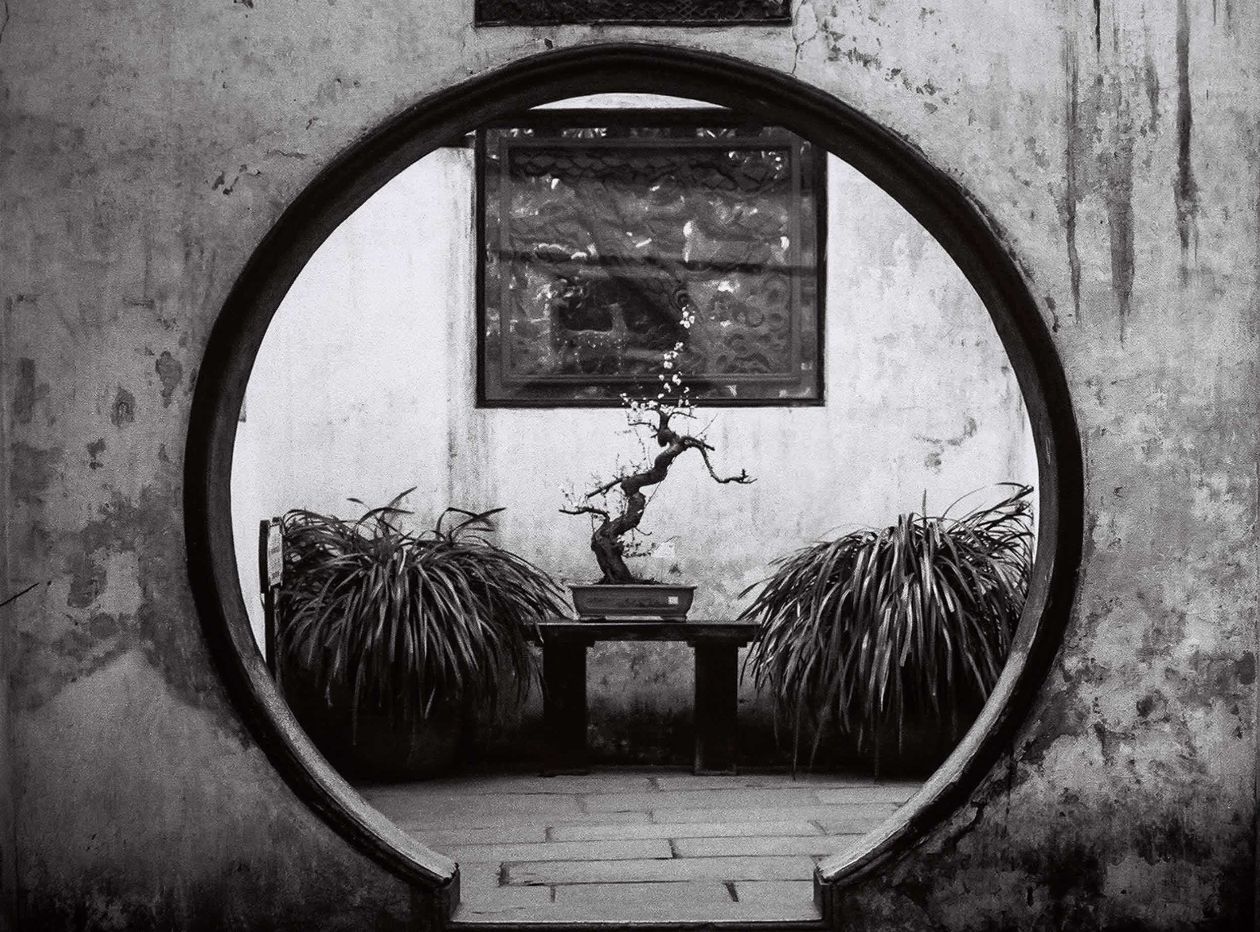 Calming Space ! Yuyuan Gardens, Shanghai, China 2005