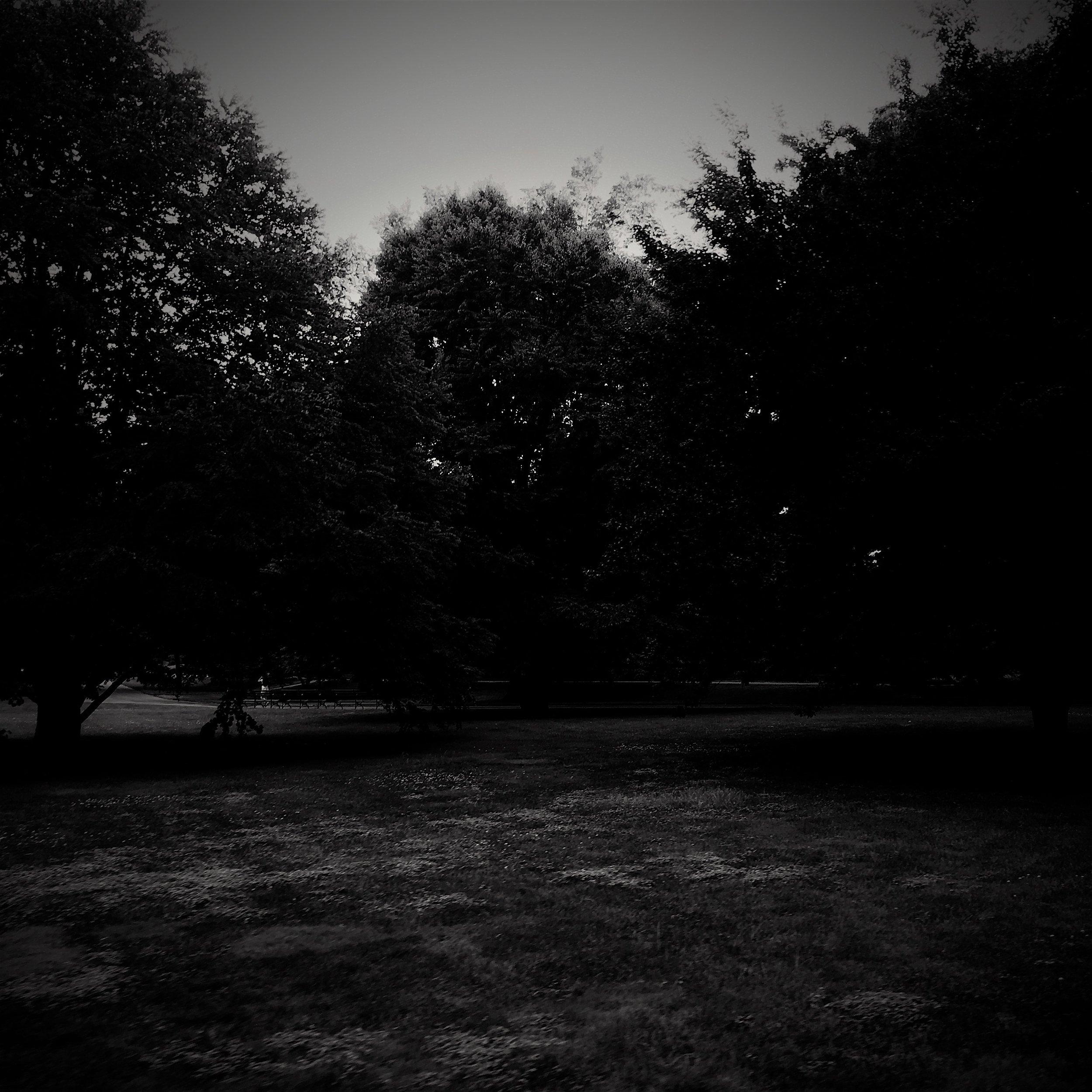 FURNITURE & LIGHTS