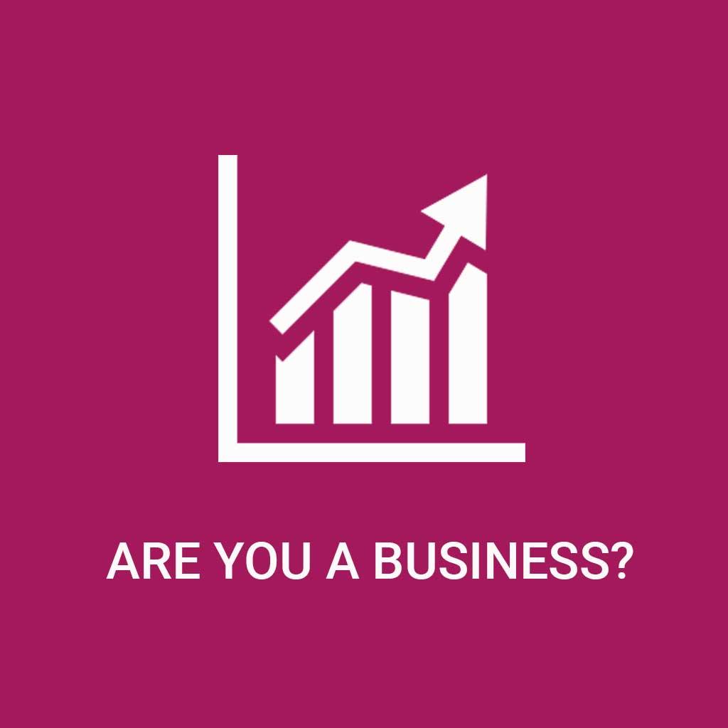 BusinessPricingIcon2.jpg
