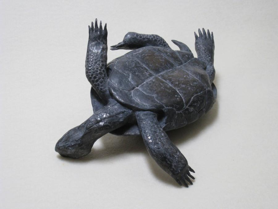 Untitled (Tortoise) 2010 cast lead 4 × 9 inches Edition 3/7