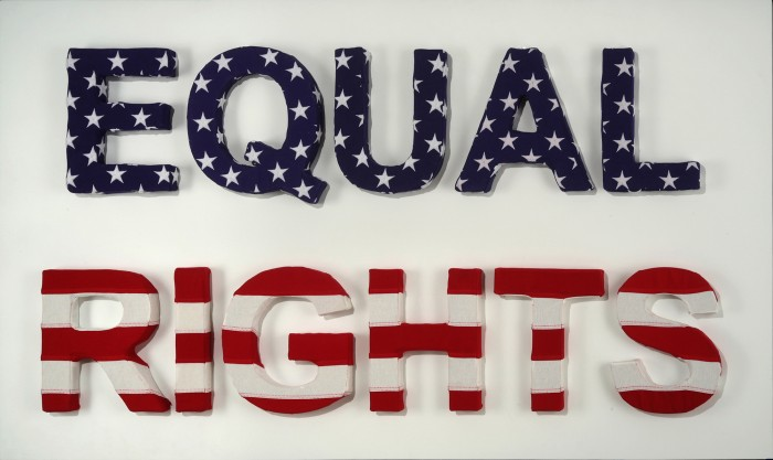 Equal Rights, 2018, US Flags, MDF, Acrylic, 37 x 65 inches