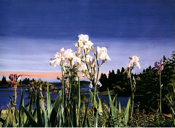 Carolyn Brady, White Irises/Evening, 1988, watercolor on paper, 51.5 x 71 inches