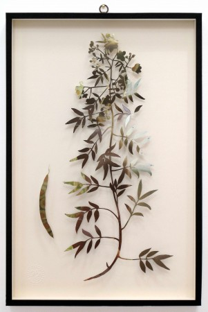 Paolo Giardi, You can learn a lot of things from the flowers - Plant XXXIX, 2013, cut out magazine centerfold and insect pins on somerset paper, 24 x 16 inches