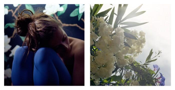 Lisea Lyons, Magnolia Diptych, 2011 c-print 20 x 43 inches