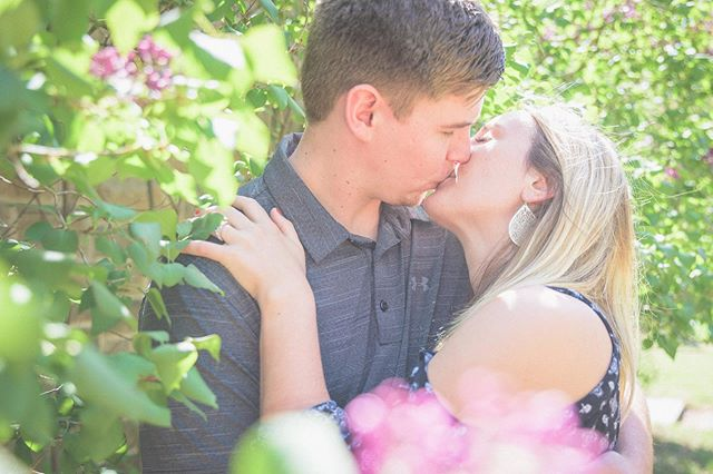 Perfect spring day for Ashley and Sam's engagement session. . . . #engagementphotography #weddingphotography #wisconsinbride #wisconsinphotographer
