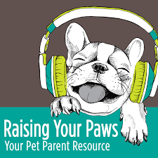 Raising Your Paws Episode 10 - Detection dogs, use their remarkable smelling abilities to help keep our hotels, schools, and homes trouble free. Dan Hughes, owner of Dogs for Defense, tells you how.