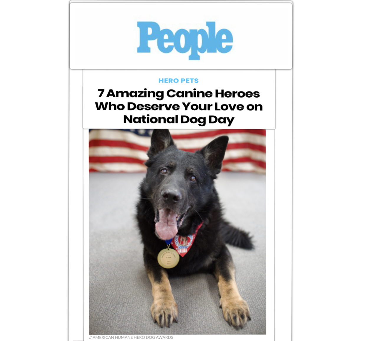 People Magazine - Dog owner or not, most can agree that canines are amazing creatures. The American Humane Hero Dog Awards was created to recognize and honor the bravery and compassion found in every pooch. Each year, the event finds hero dogs that are saving and changing lives every day and has the country vote for a top dog in seven different categories. After receiving more than half a million votes, the American Humane Hero Dog Awards has chosen the winners of each category, which are also the seven finalists for the 2017 American Hero Dog prize.