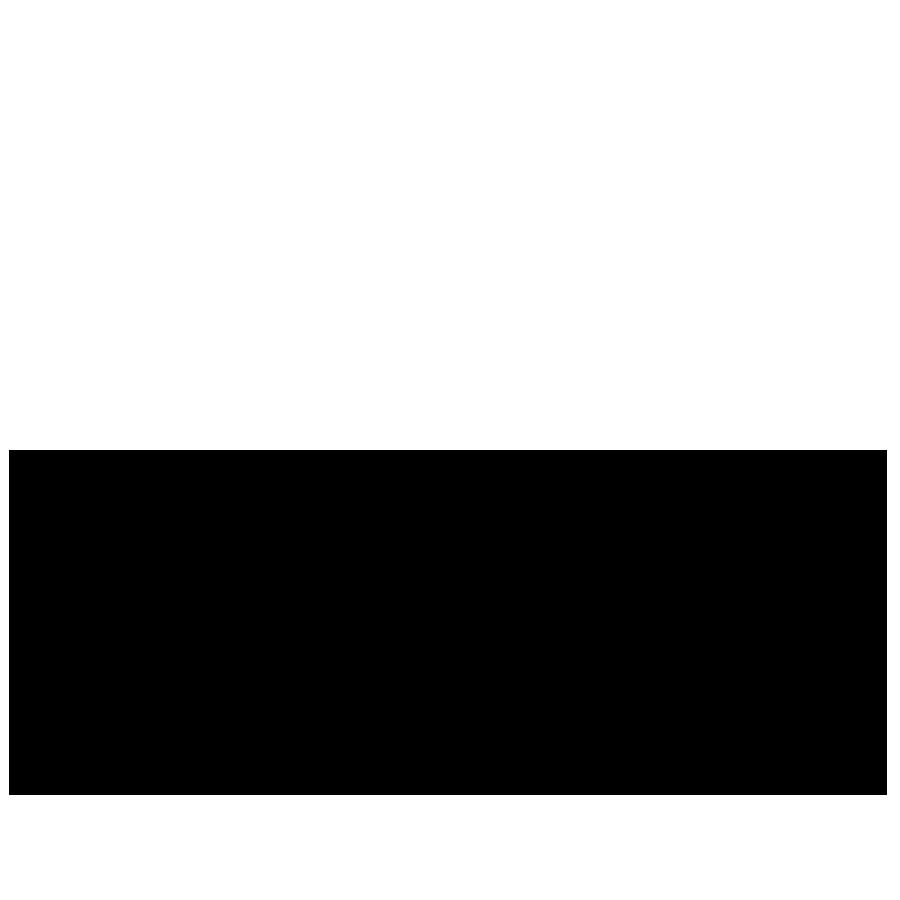 festin_logo_vetor.png