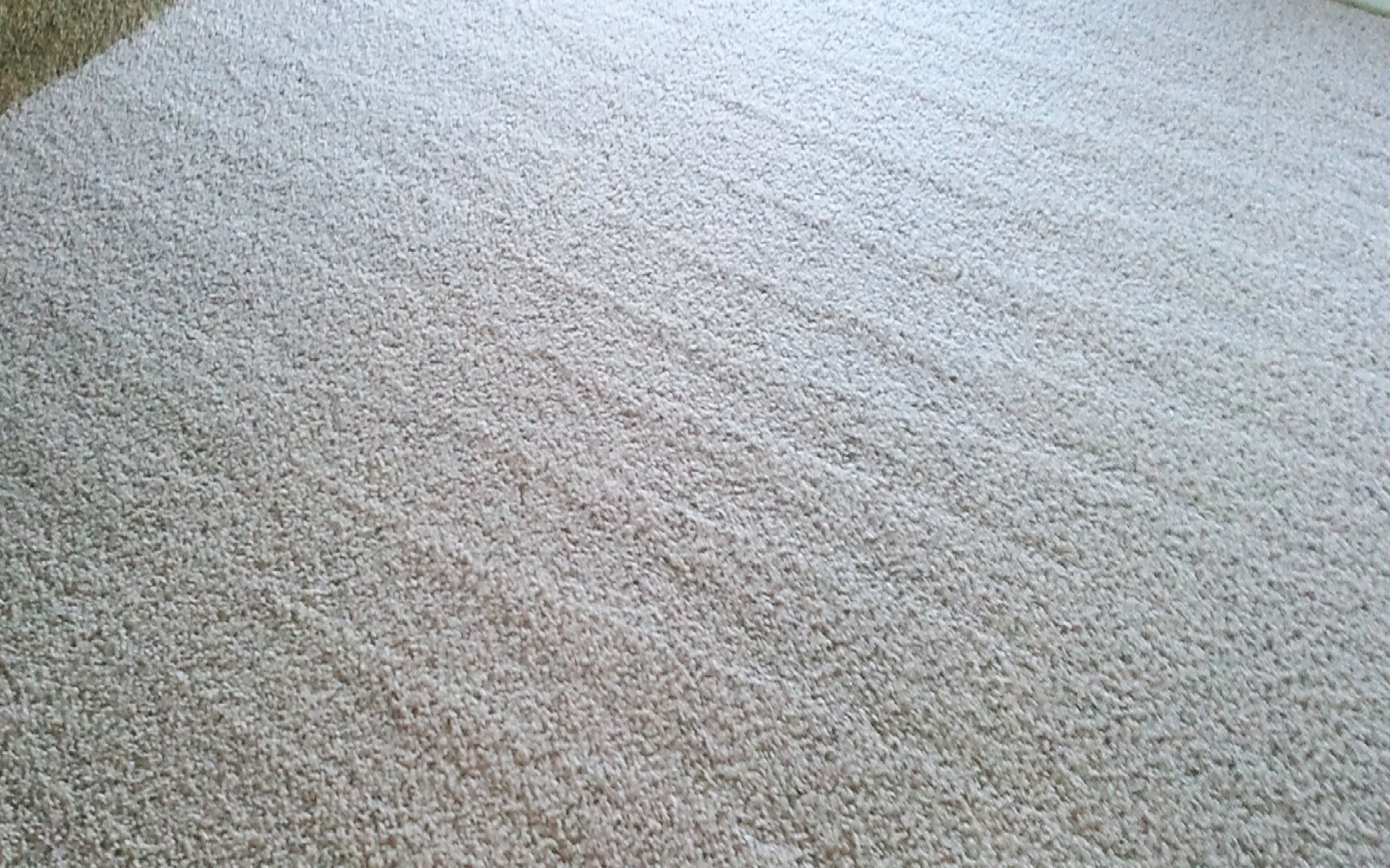 Carpet-Cleaning-Lake-Forest-IL-10.jpg