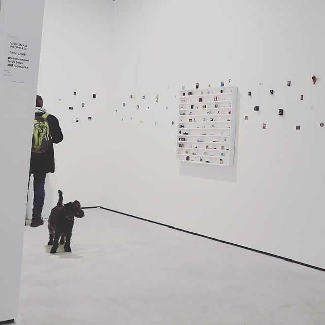 🐕 . . . . . . . . . . . . . . . . . . . . . . . . . . . . . . . . . . . #contemporaryart #contemporaryartist #londonart #londonartist #gallery #exhibition #installation #artist #photographer