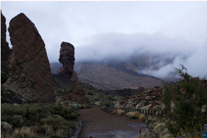 Tenerife 7.JPG
