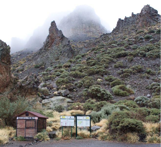Tenerife 8.JPG