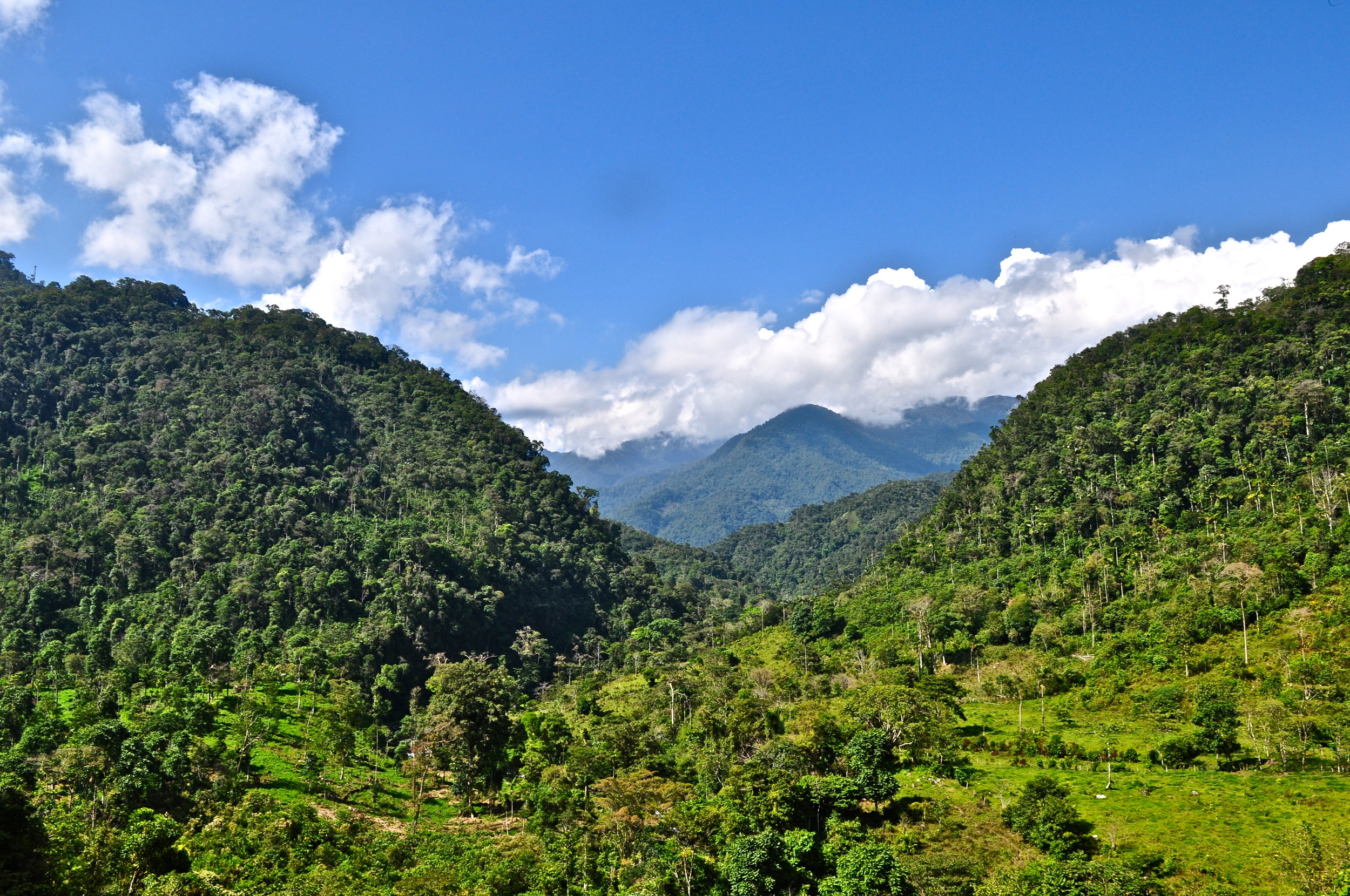 The purchase of certified carbon offsets protects forests and benefits local communities, including the Alto Mayo Protected Forest in Peru, pictured above. (© Conservation International/photo by Bailey Evans)